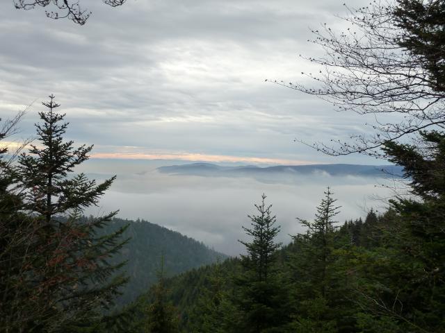Entre brume et nuages.