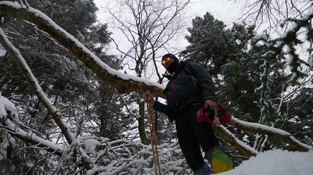 6601_p1110625-neige_18-01-16.jpg