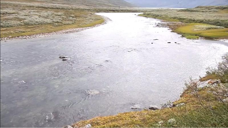 2_riviere.jpg