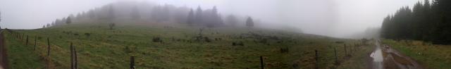 7131_20130430_110422.jpg