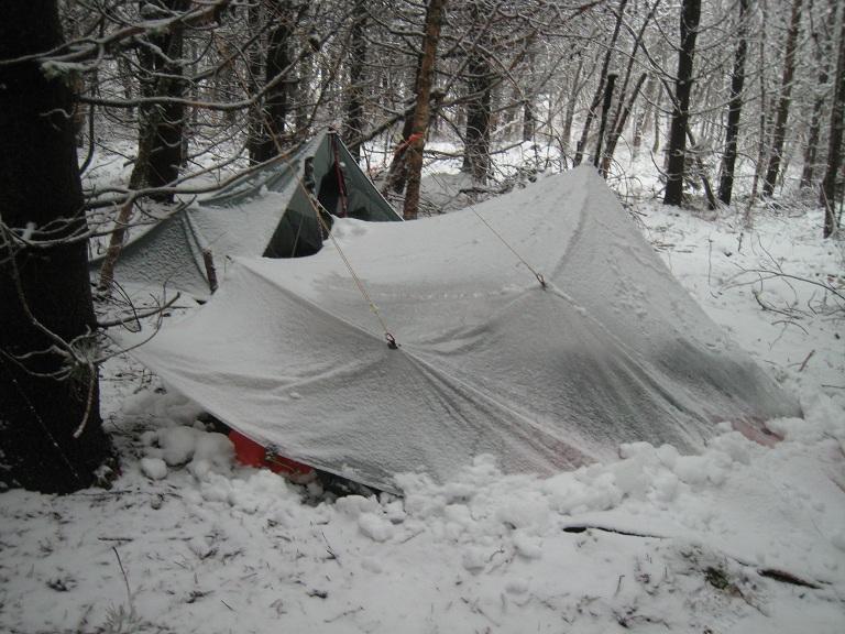 6257_tarp_et_neige_28-01-15.jpg