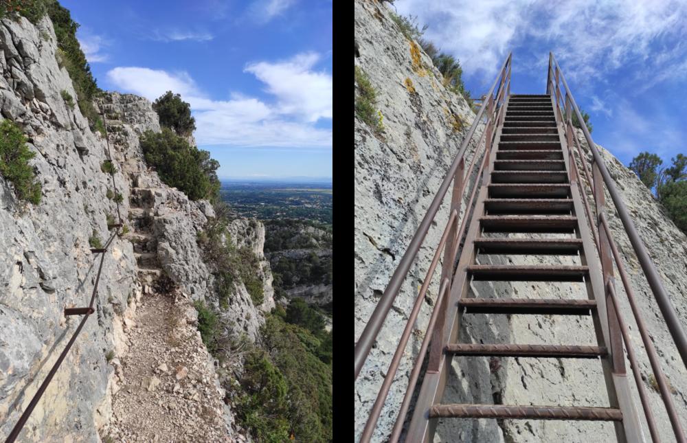 7Njcvi6EN.escalier-echelle.png