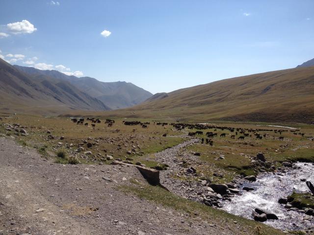 6536_kirghizistan_2015_576_22-09-15.jpg
